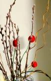 Salgueiro com bolas vermelhas decorativas Foto de Stock Royalty Free