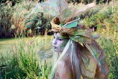 Salgueiro da floresta Imagens de Stock Royalty Free