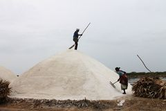 Sali i lavoratori della pentola al calimere del punto, il Tamil Nadu, India Fotografia Stock