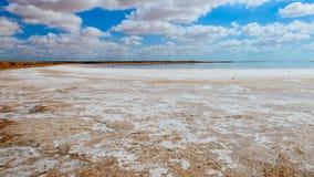 Sali il deserto Fotografie Stock