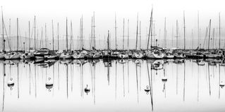 Saliboats and Reflection Black and White Stock Photo