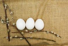 Salice ed uova, fondo di pasqua immagine stock libera da diritti