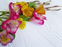 Salice, primavera di fioritura dei fiori su un fondo di legno bianco con alstroemeria Fotografie Stock Libere da Diritti