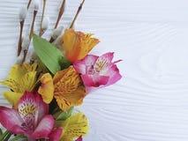 Salice, primavera di fioritura dei fiori su un fondo di legno bianco rustico con alstroemeria Immagine Stock Libera da Diritti