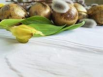 Salice su un fondo di legno bianco della decorazione naturale, alstroemeria di domenica delle uova della quaglia bello del ramo v Fotografie Stock Libere da Diritti