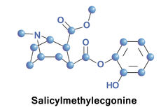 Salicylmethylecgonine metabolite of cocaine. Salicylmethylecgonine is a tropane derivative drug which is both a synthetic analogue and a possible active royalty free illustration