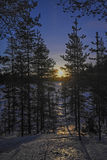 Salida de la luna en el bosque Imagenes de archivo