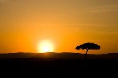 Salida del sol 1 fotografía de archivo libre de regalías