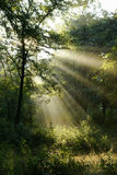 Salida del sol Fotografía de archivo libre de regalías