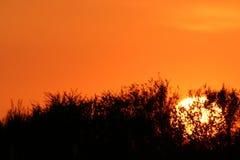 Salida del sol Imágenes de archivo libres de regalías