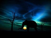 Salida del sol 96 del elefante stock de ilustración