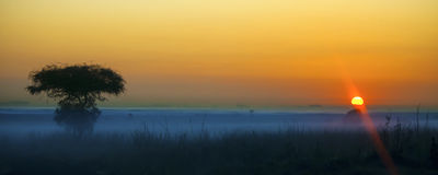 Salida del sol africana Fotografía de archivo libre de regalías