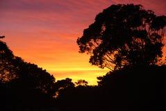 Salida del sol africana Foto de archivo libre de regalías
