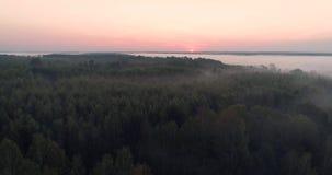 Salida del sol anaranjada en el río, visión aérea 4K de la niebla de la mañana en la salida del sol, rayos anaranjados del sol a  almacen de metraje de vídeo