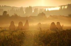 Salida del sol anaranjada hermosa y niebla Imágenes de archivo libres de regalías