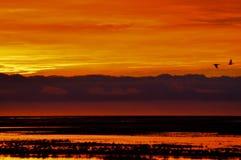 Salida del sol anaranjada y amarilla Fotografía de archivo