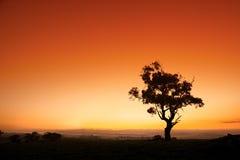 Salida del sol australiana Fotos de archivo