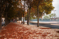 Salida del sol Autumn Landscape Foto de archivo libre de regalías