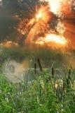 Salida del sol brumosa Imagen de archivo libre de regalías