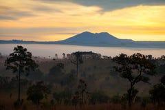 Salida del sol brumosa de la mañana en el parque nacional Phetch de Thung Salang Luang Imagen de archivo libre de regalías