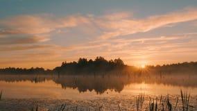 Salida del sol brumosa de la mañana en pantano almacen de video