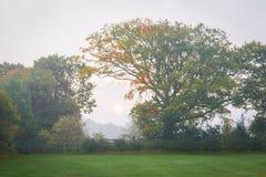 Salida del sol brumosa en Kent fotografía de archivo