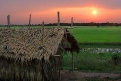 Salida del sol camboyana Imagen de archivo libre de regalías