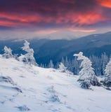Salida del sol colorida del invierno en las montañas Fotografía de archivo