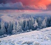 Salida del sol colorida del invierno en las montañas Imagen de archivo libre de regalías