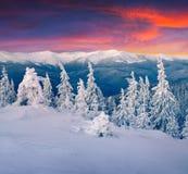 Salida del sol colorida del invierno en las montañas Foto de archivo libre de regalías