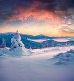 Salida del sol colorida del invierno en las montañas Imagenes de archivo