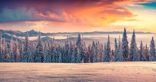 Salida del sol colorida del invierno en las montañas Foto de archivo