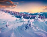 Salida del sol colorida del invierno en las montañas Fotos de archivo