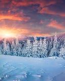 Salida del sol colorida del invierno en las montañas Imagen de archivo