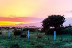 Salida del sol colorida en el campo Fotos de archivo