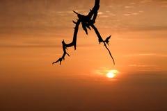 Salida del sol con el cielo anaranjado imagenes de archivo