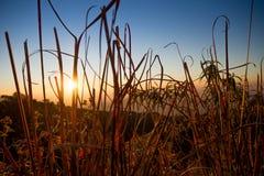 Salida del sol con el cielo claro Fotos de archivo