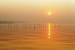 Salida del sol con el seagul Imagen de archivo libre de regalías