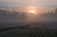 Salida del sol con la pequeña niebla imagen de archivo libre de regalías