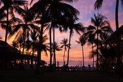 Salida del sol con las palmeras Imagen de archivo libre de regalías