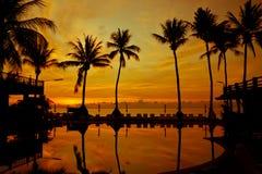 Salida del sol con las palmeras de la silueta Foto de archivo libre de regalías