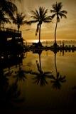 Salida del sol con las palmeras de la silueta Imagen de archivo