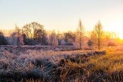 Salida del sol congelada cerca de Wiesmoor Foto de archivo