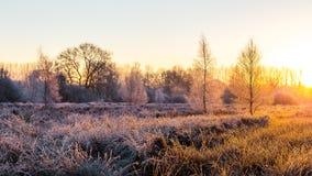Salida del sol congelada cerca de Wiesmoor Fotos de archivo libres de regalías