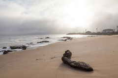 Salida del sol de la bahía de Monterey Fotografía de archivo libre de regalías