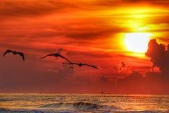 Salida del sol de la Costa del Golfo imágenes de archivo libres de regalías