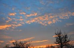 Salida del sol de la mañana con los árboles en el› Å™ice de LitomÄ imagen de archivo libre de regalías