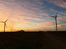 Salida del sol de la mañana de las turbinas de viento fotografía de archivo libre de regalías