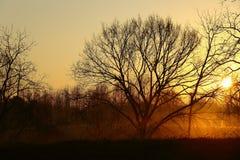 Salida del sol de la mañana del país Fotos de archivo libres de regalías