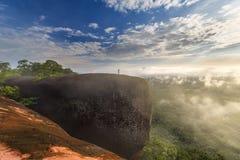 Salida del sol de la mañana y de niebla de la roca del árbol foto de archivo libre de regalías